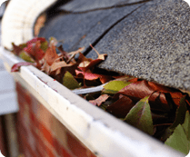 gutter cleaning/ roof moss removal