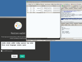 wallet password recovery